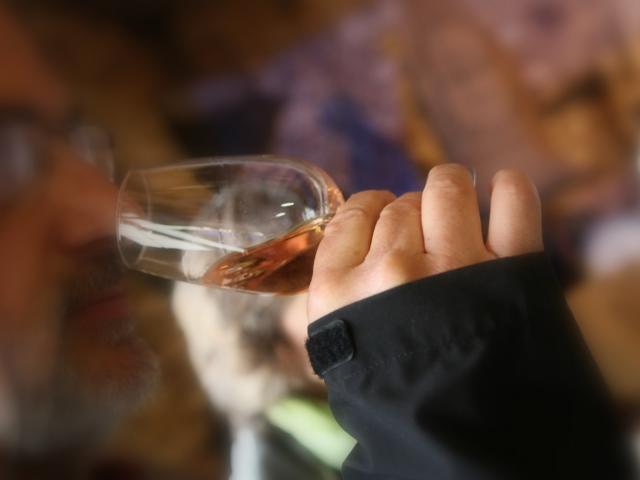Dégustation vin AOC Coteaux du Vendômois