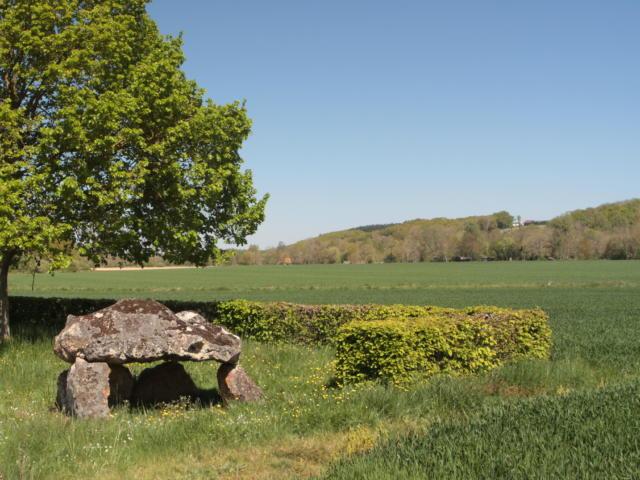 Dolmen en plaine campagne à Saint-Hilaire-la-Gravelle