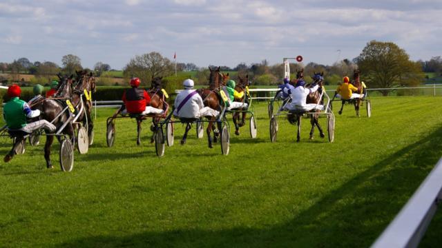 Course de chevaux avec sulky Hippodrome