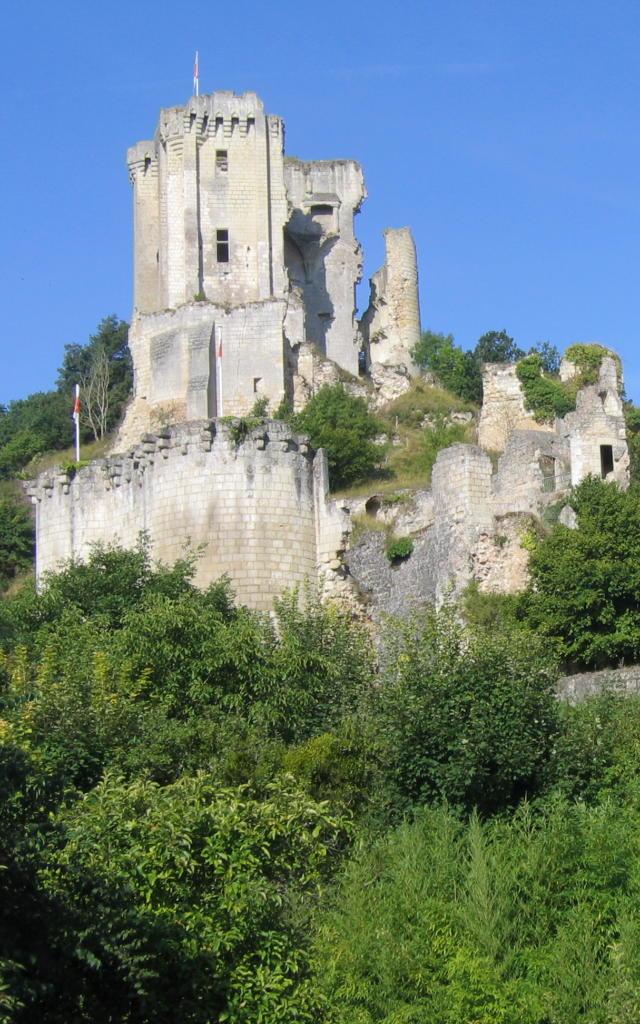 Vue d'ensemble du château de Lavardin