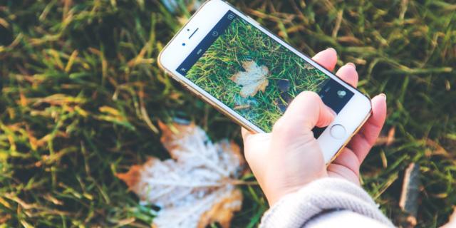 Smartphone Nature