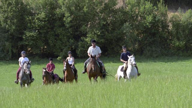 Balade à cheval dans le Perche