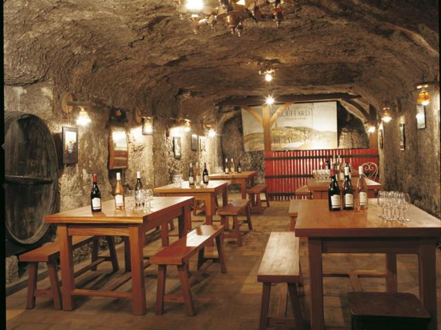 Dégustation de vin au Domaine du Four à Chaux