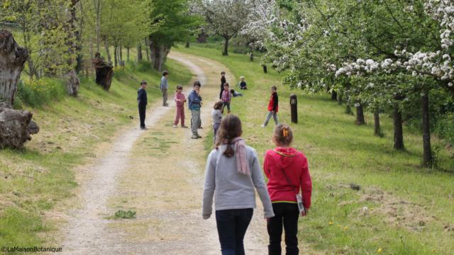 Enfants sur le chemin des Trognes à la Maison Botanique de Boursay