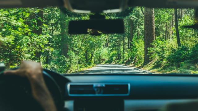 Vue sur une route de l'intérieur d'une voiture en Perche Vendômois
