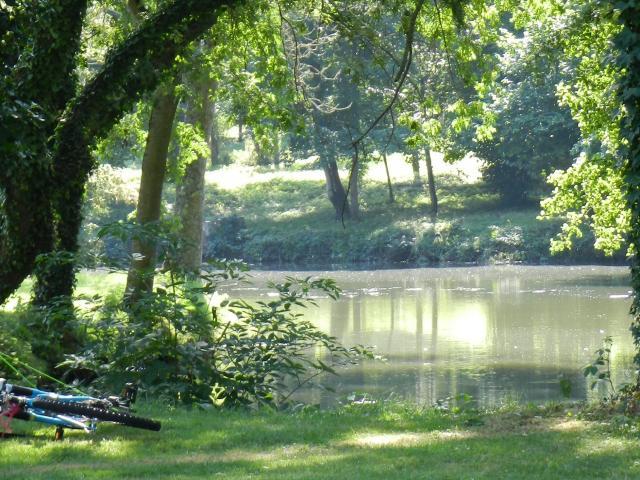 Le Loir