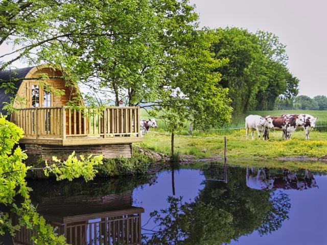 Cabane Pod à la Ferme du Bois Neuf à La Chapelle Vicomtesse